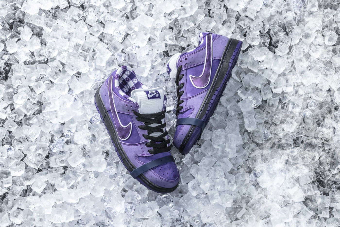 "check out f0aca 4ef6b Where to Buy the Concepts x Nike SB Dunk Low ""Purple Lobster"""