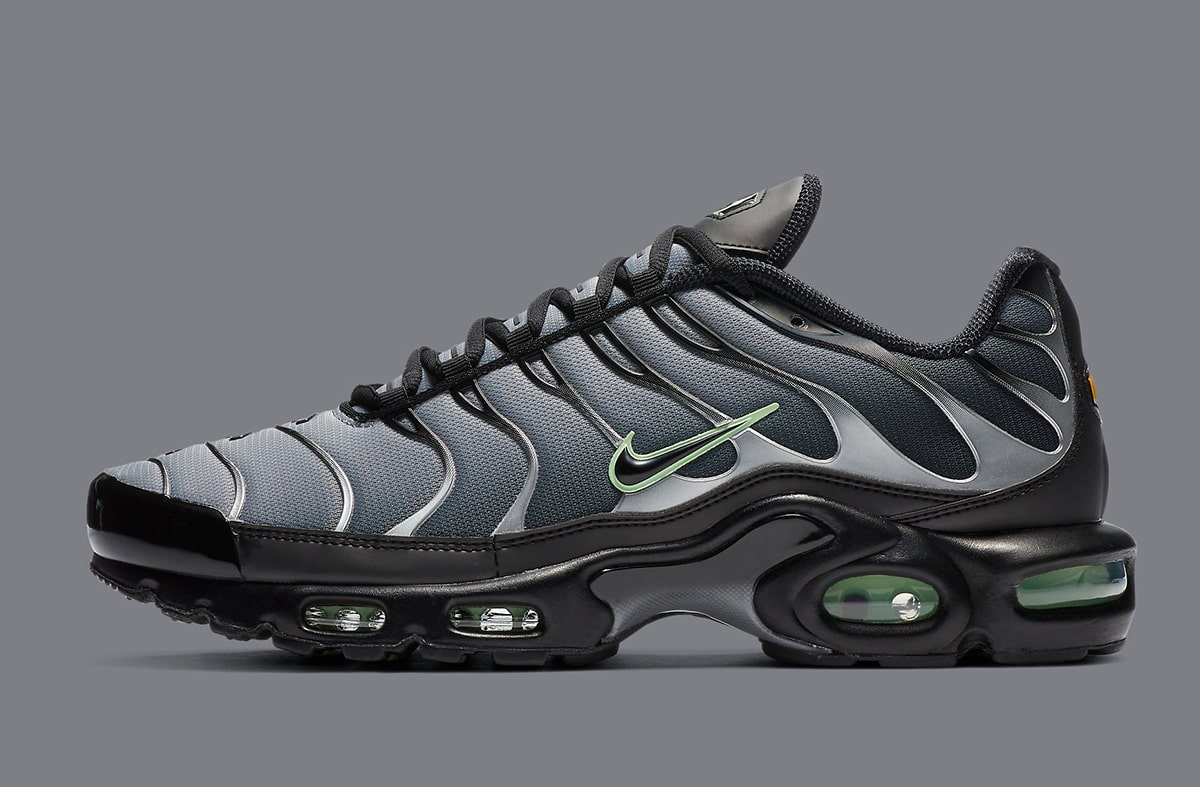 Contratista Anguila Helecho  The Nike Air Max Plus